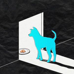 אוכל וכלב